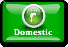 Domestic-Leader-230x160
